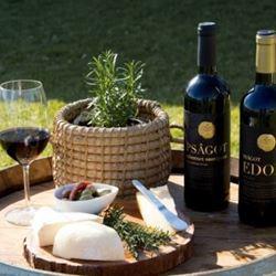 Wineries in Israel
